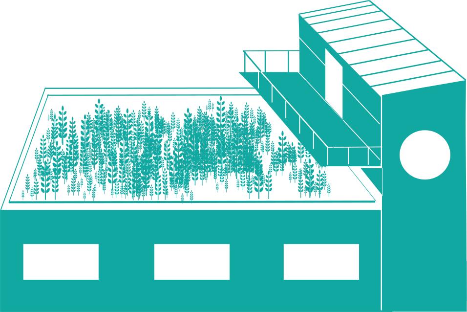 Végétalisation toit-terrasse/toit plat Dijon
