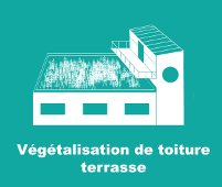 Végétalisation de toiture terrasse
